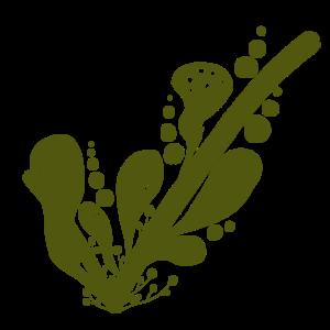 Korzyści ziołowego parowania
